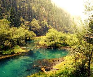 Đến Cửu Trại Câu vào mùa nào đẹp nhất?