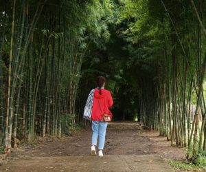 Kinh nghiệm du lịch Buôn Ma Thuật ngày mưa: Chi phí 3 ngày hết bao nhiêu?