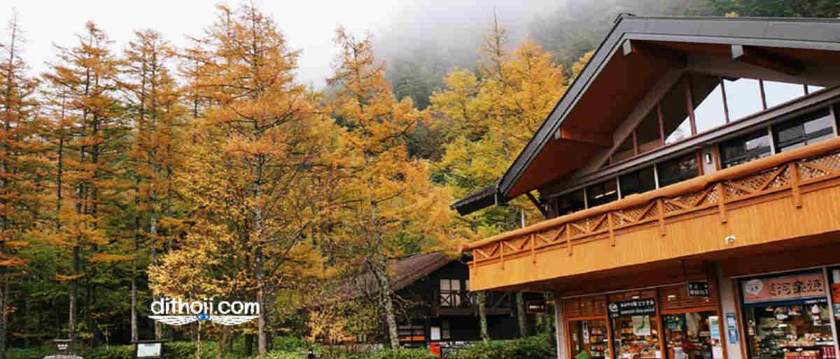 Du lịch Nhật Bản tự túc mùa thu
